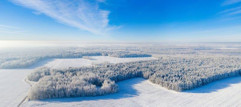 Fond panoramique d'hiver photos stock