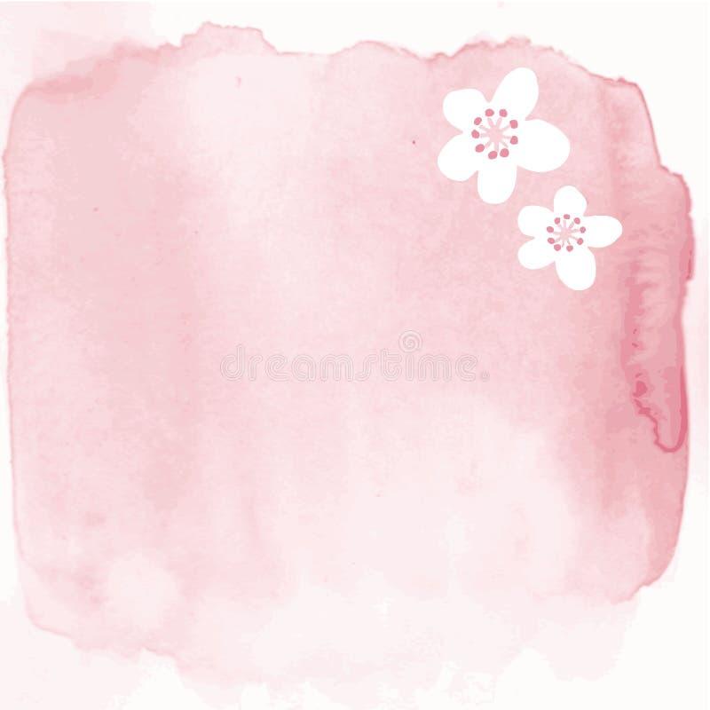 Fond peint à la main d'aquarelle avec les fleurs de cerisier japonaises illustration libre de droits