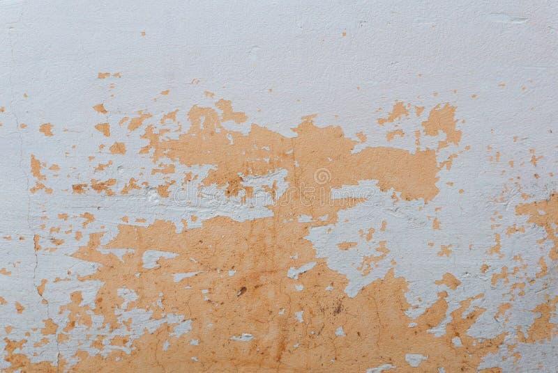 Fond peint du ` s de mur/vraie texture orange d'isolement sur le blanc avec l'espace de copie photo stock