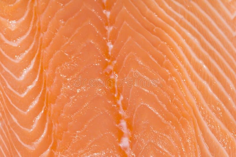 Fond - plan rapproché du filet saumoné photographie stock