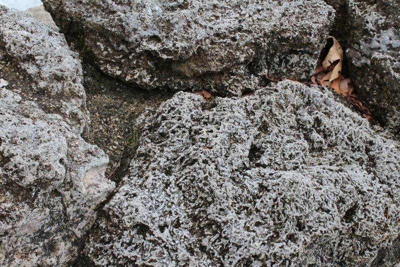 Fond poreux de roches volcaniques photo libre de droits