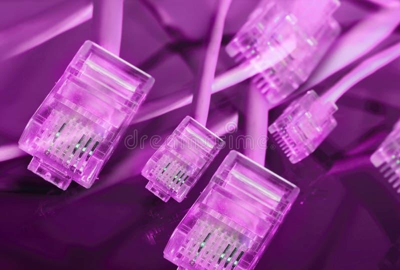 Fond pourpre de prise d'Ethernet photos libres de droits