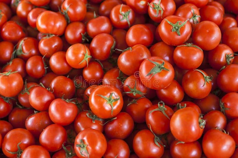 Fond qualitatif des tomates Tomates fraîches Tomates rouges Tomates organiques du marché de village photo stock