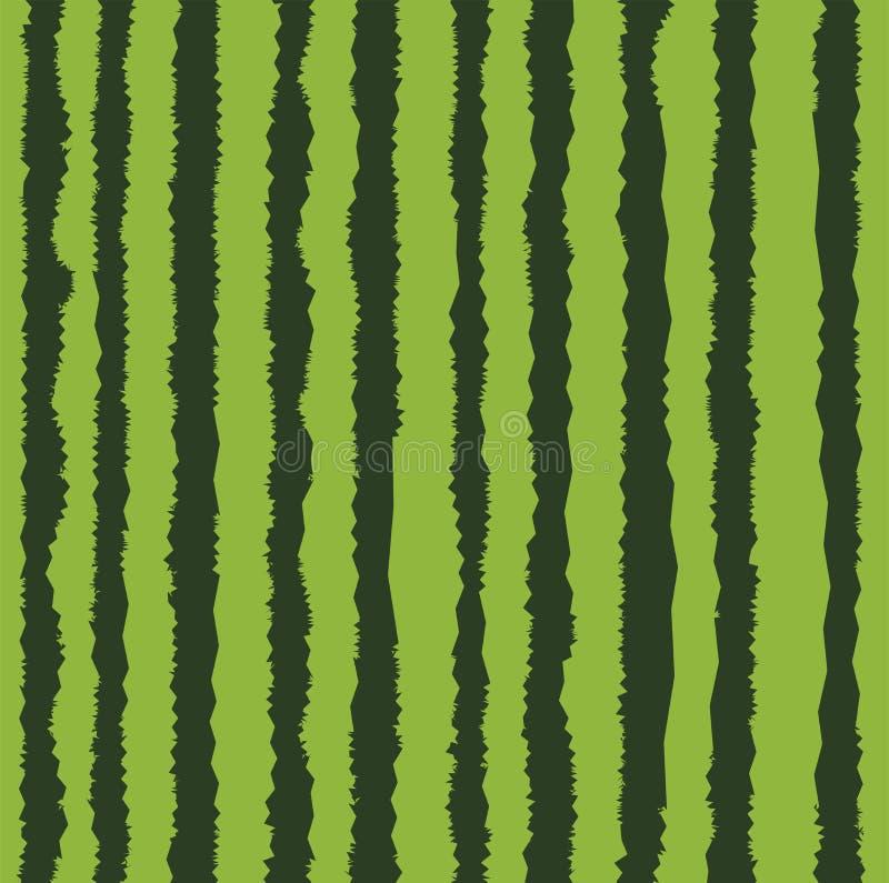 Fond réaliste de peau de pastèque de vecteur illustration stock