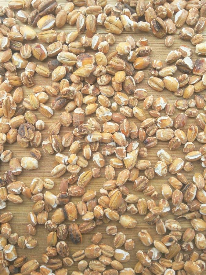 Fond rôti de grain d'avoine images stock