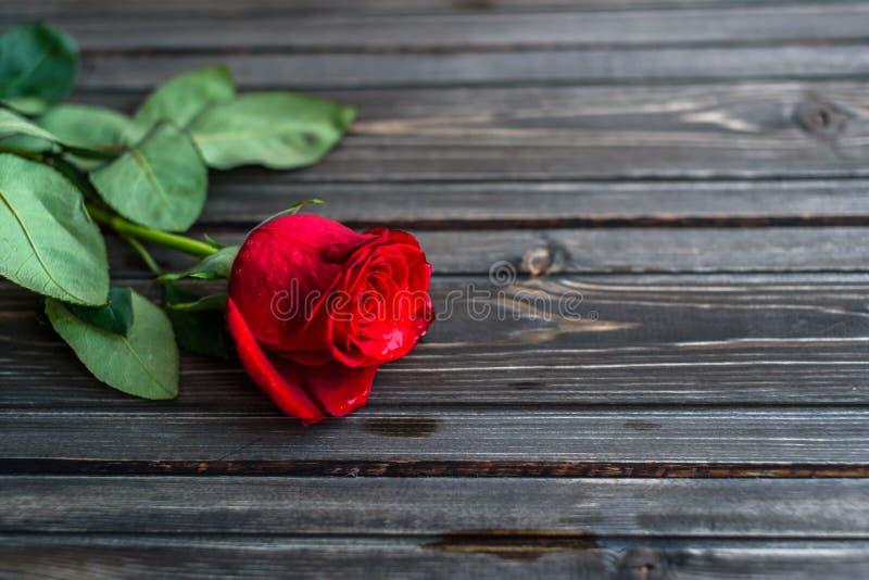 fond romantique avec la rose de rouge sur la table en bois vue sup rieure photo stock image. Black Bedroom Furniture Sets. Home Design Ideas