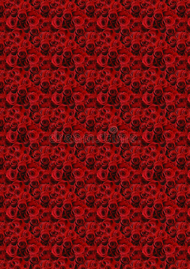 Fond rouge de roses. photo stock