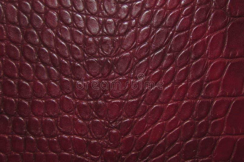 Fond rouge fonc? de texture de peau de crocodile photos libres de droits