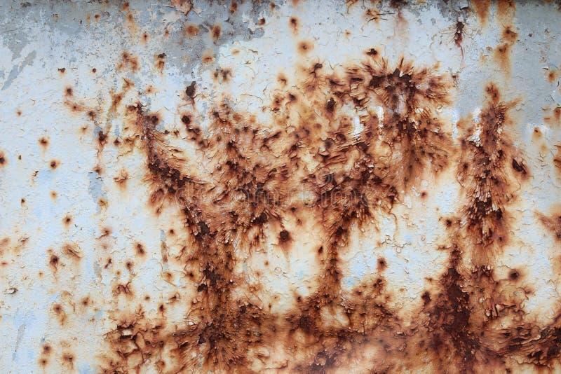 Fond rouillé de texture d'abrégé sur mur de zinc photo stock
