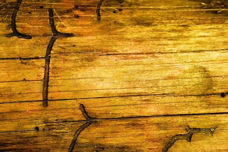 Fond sale en bois images stock