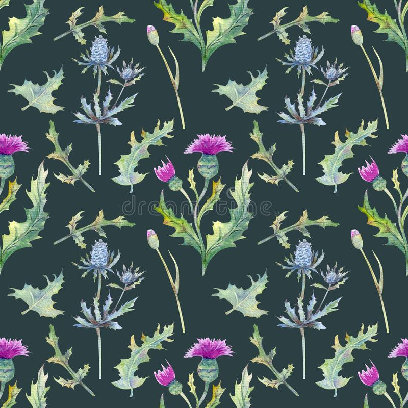 Fond sans couture avec des fleurs et des feuilles de ressort Wildflowers sur un fond vert modèle floral pour le papier peint ou l photos stock