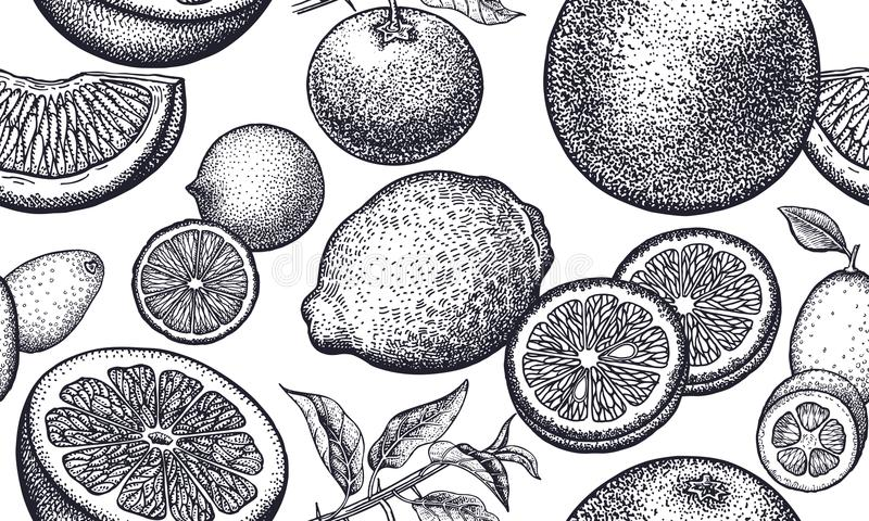 Fond sans couture avec des fruits de grenade illustration de vecteur