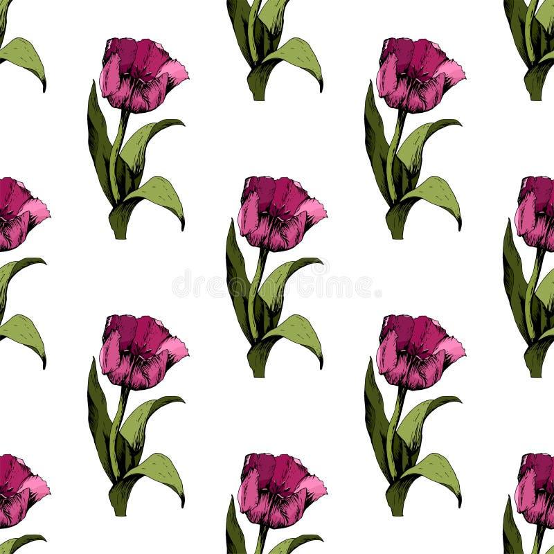 Fond sans couture avec les tulipes roses color?es Illustration Fond sans couture floral avec les tulipes color?es Humeur de sourc illustration libre de droits
