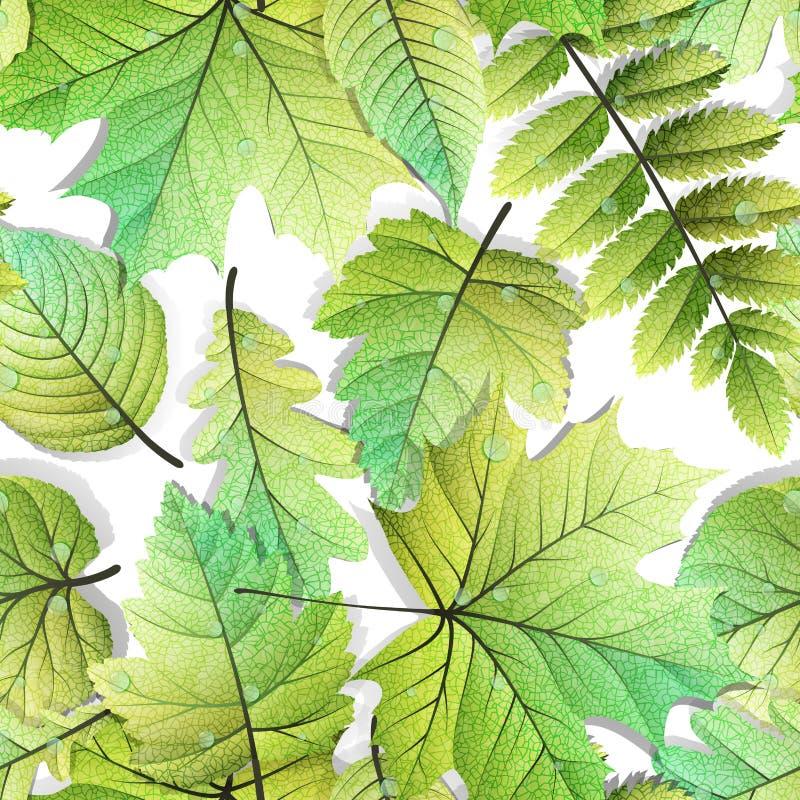 Fond sans couture de feuilles détaillées ENV 10 illustration stock