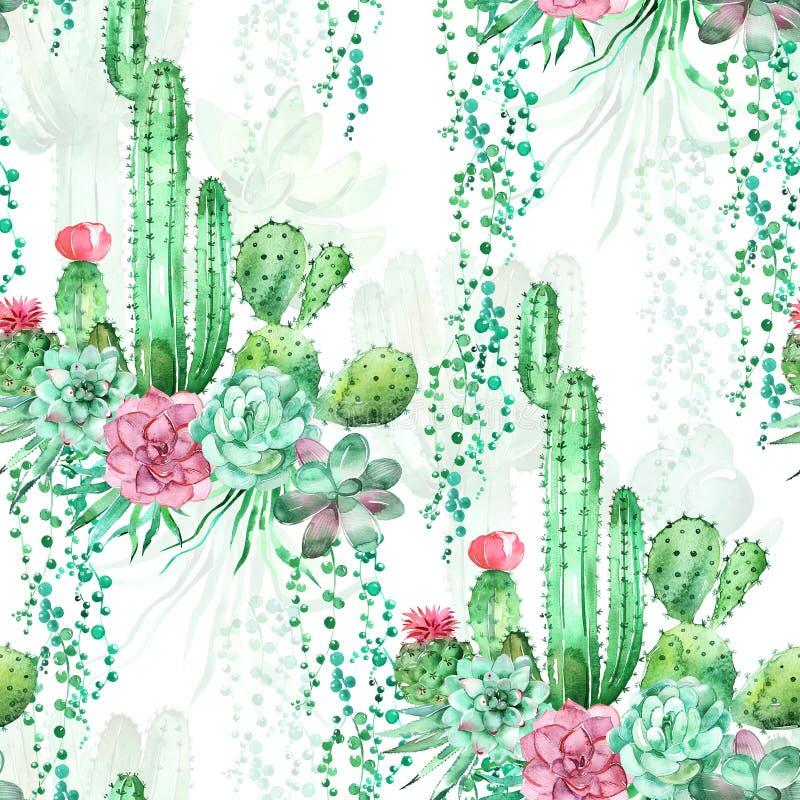 Fond sans couture de modèle d'aquarelle avec les succulents et le cactus photos stock