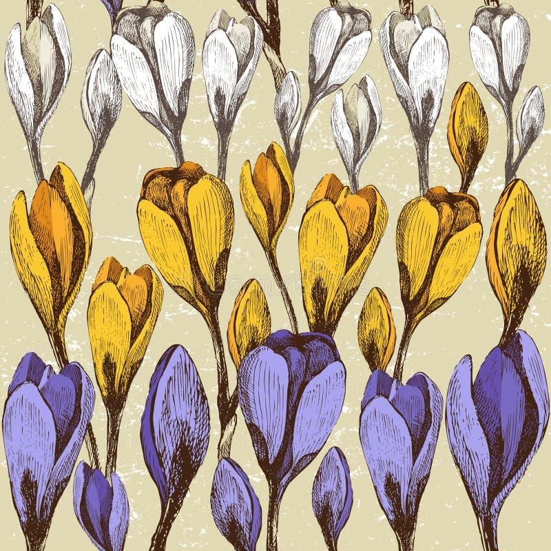 Fond sans joint avec des fleurs de safran illustration de vecteur