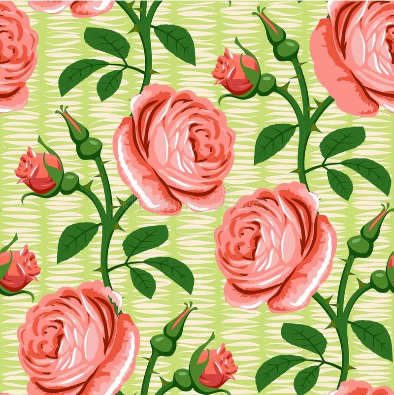 Fond sans joint de rose rose illustration de vecteur
