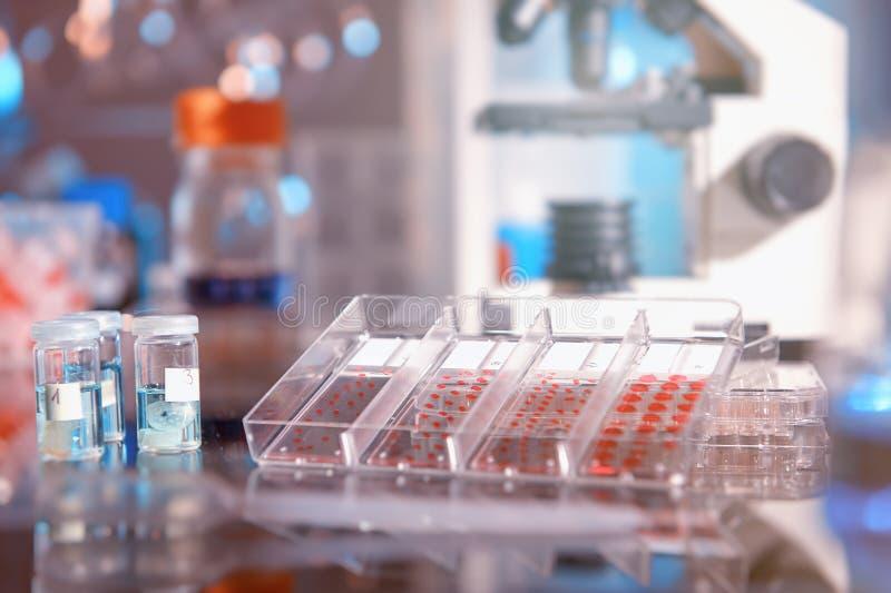 Fond scientifique avec les outils modernes d'histopathologie photo libre de droits