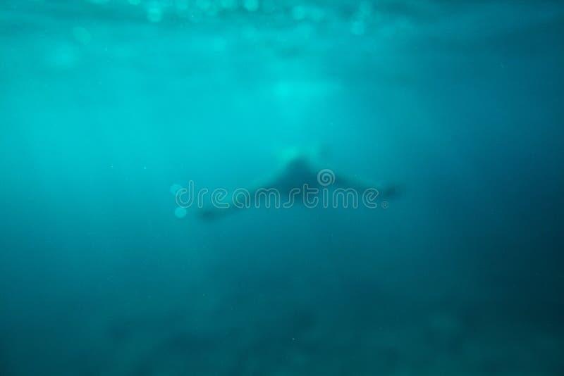 Fond sous-marin d'abrégé sur mer de bain d'homme images libres de droits