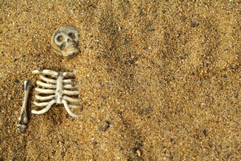 Fond squelettique image libre de droits