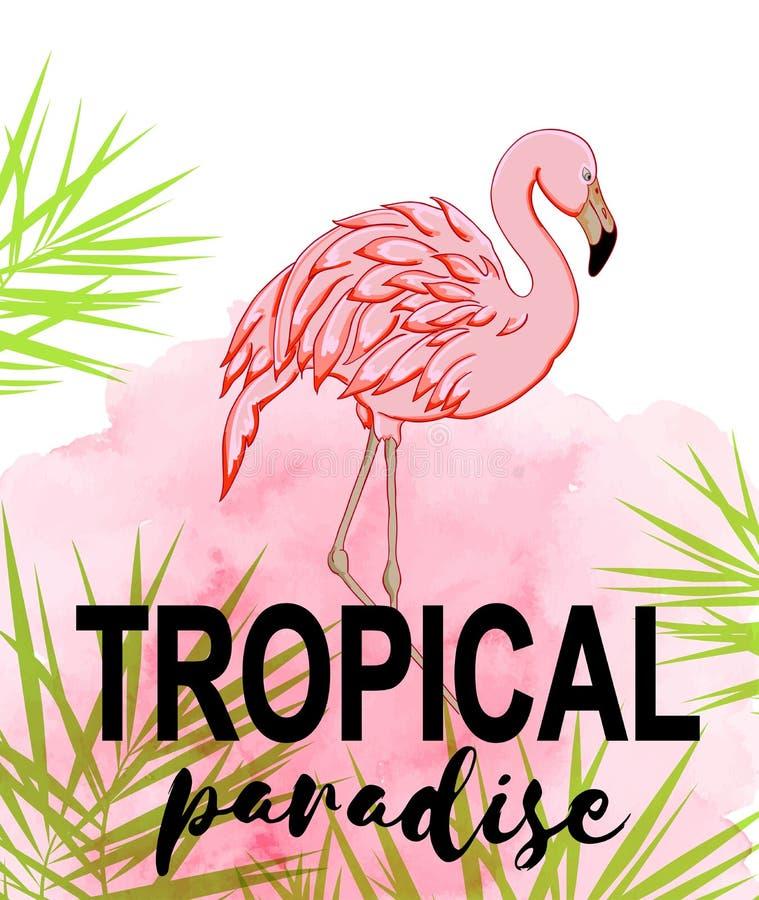 Fond tropical avec la goutte de flamant et d'aquarelle illustration stock