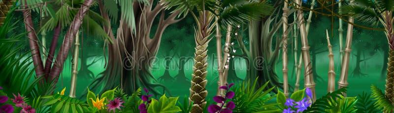 Fond tropical de forêt