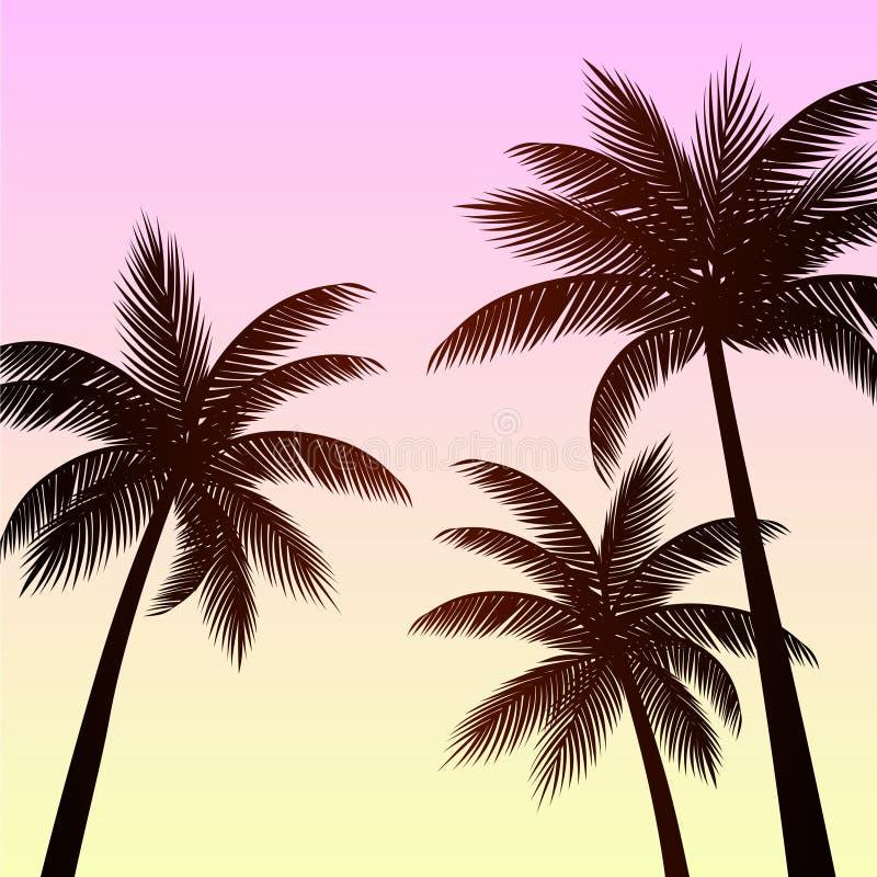 Fond tropical de palmier de silhouette illustration libre de droits