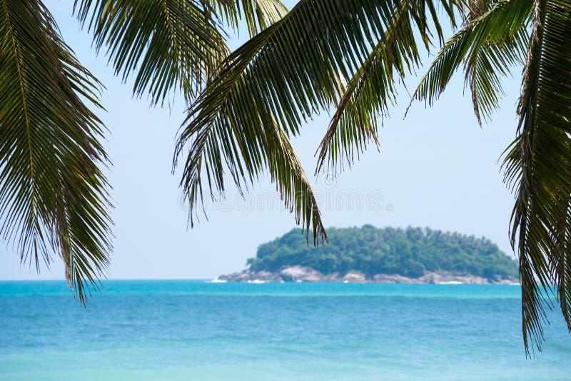 Fond tropical de plage à la journée photographie stock libre de droits