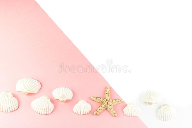 Fond tropical de vacances d'?t? Étoiles de mer entourées par les coquillages blancs sur un fond rose Copiez l'espace, vue sup?rie image libre de droits
