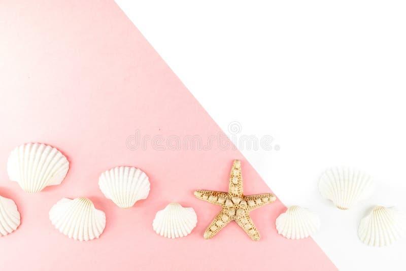 Fond tropical de vacances d'?t? Étoiles de mer entourées par les coquillages blancs sur un fond rose Copiez l'espace, vue sup?rie photographie stock