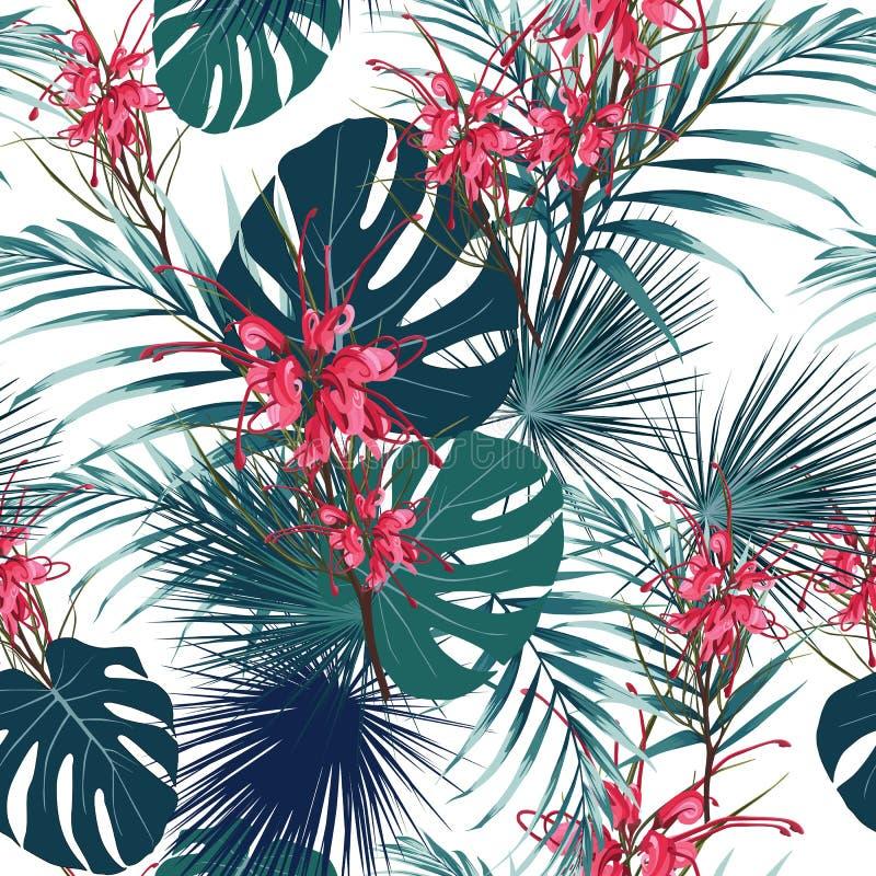 Fond tropical sans couture de modèle de fleur Le Protea fleurit, des feuilles de jungle, sur le fond clair illustration stock