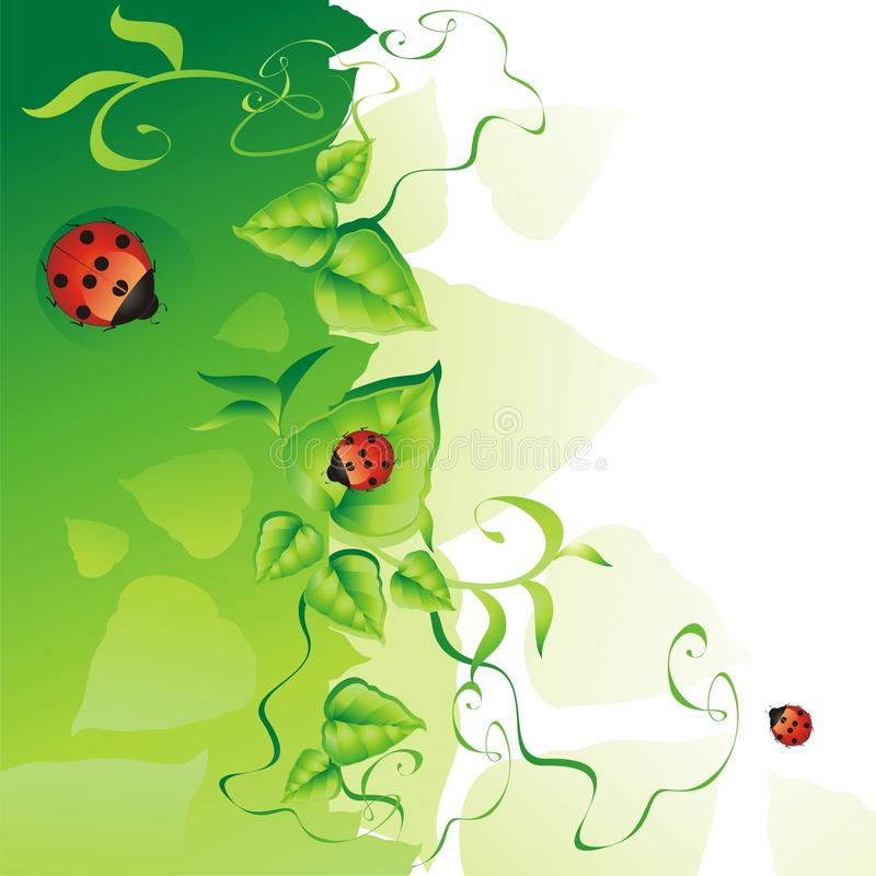 Fond vert. illustration libre de droits