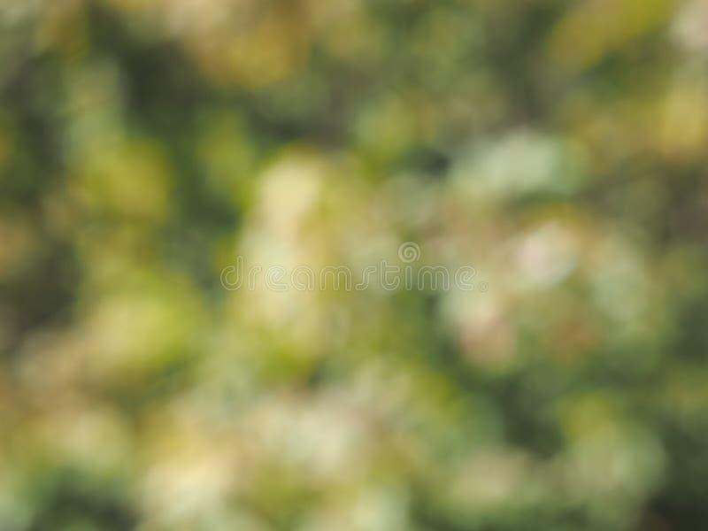 Fond vert abstrait de tache floue images stock
