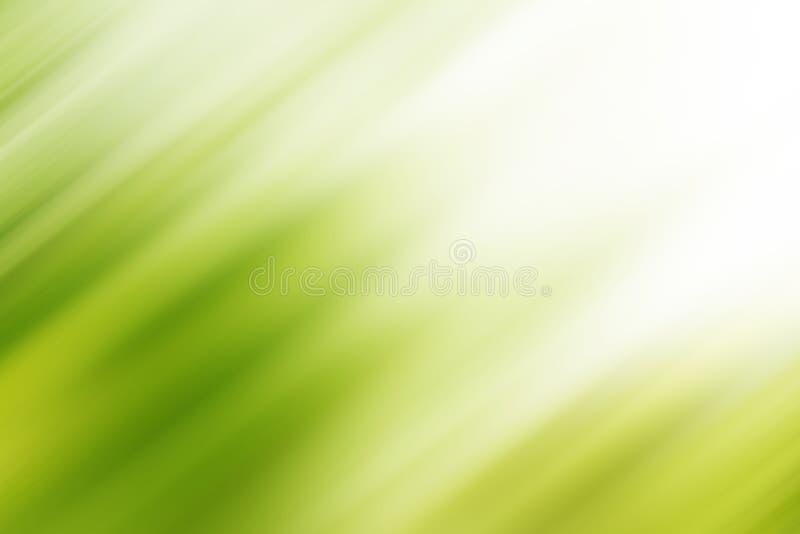 Fond vert abstrait de tache floue de mouvement avec la lumière lumineuse Fond frais de nature photographie stock