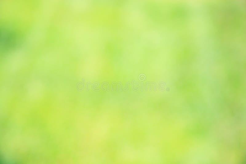 Fond vert abstrait ensoleillé de nature, foyer sélectif photographie stock libre de droits