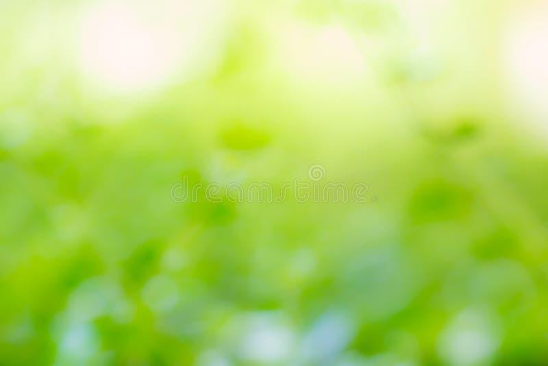 Fond vert brouillé par abstrait image libre de droits