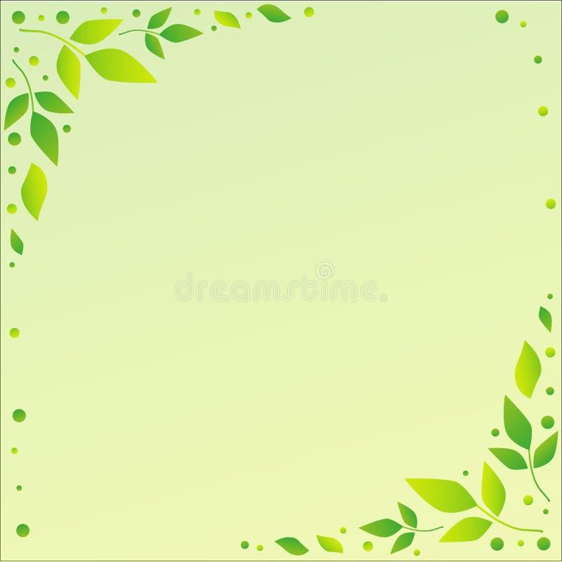 Fond vert clair avec les bords décoratifs avec les feuilles et les points verts illustration libre de droits