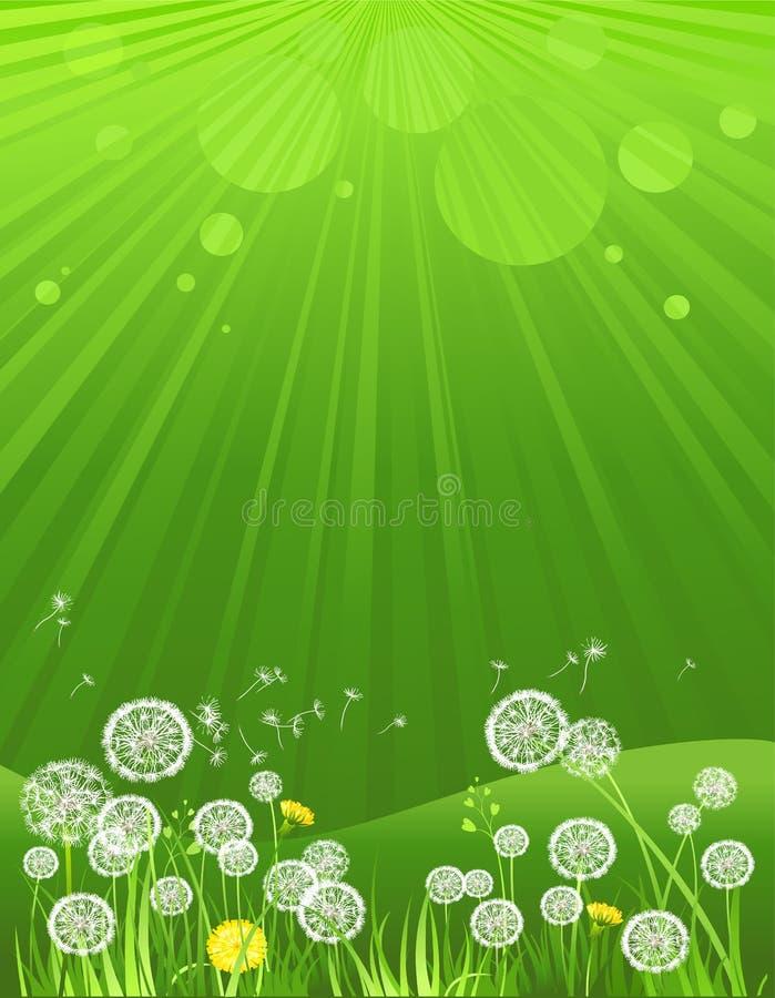 Fond vert d'été illustration libre de droits