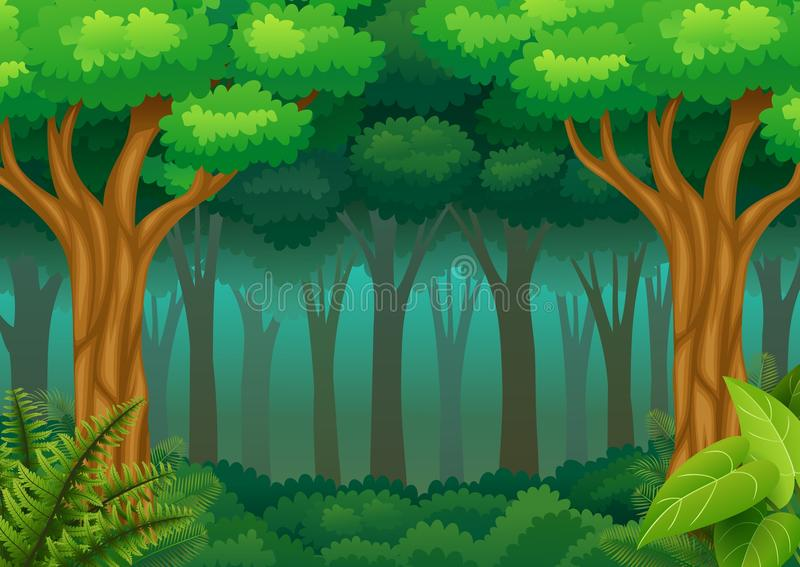 Fond vert de forêt