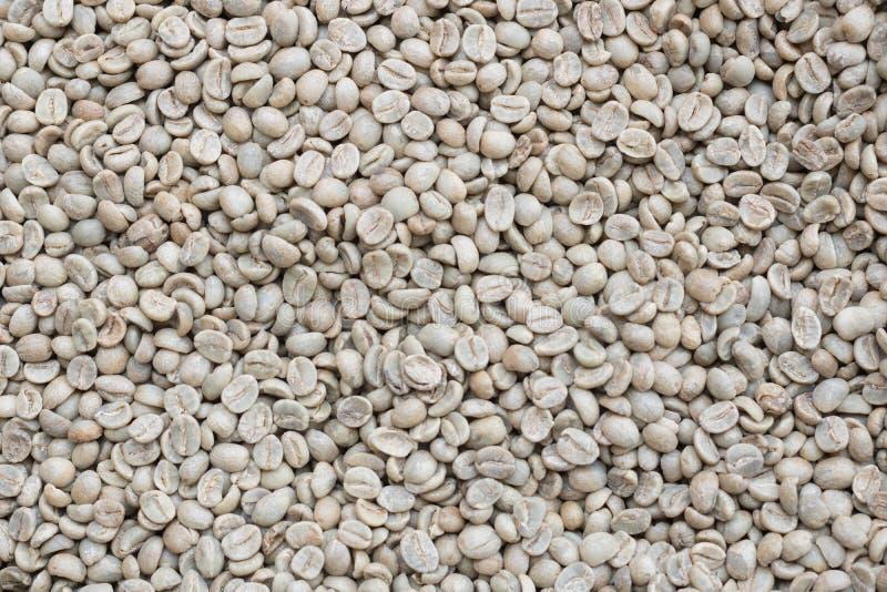 Fond vert de grain de café photo libre de droits