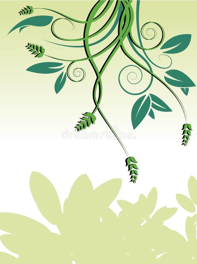 Fond vert de vignes illustration de vecteur