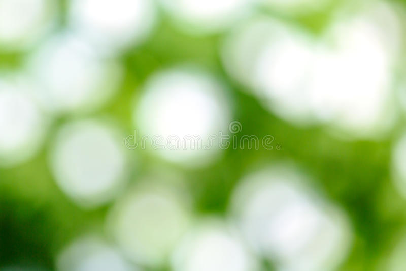 Fond vert frais de tache floue images libres de droits