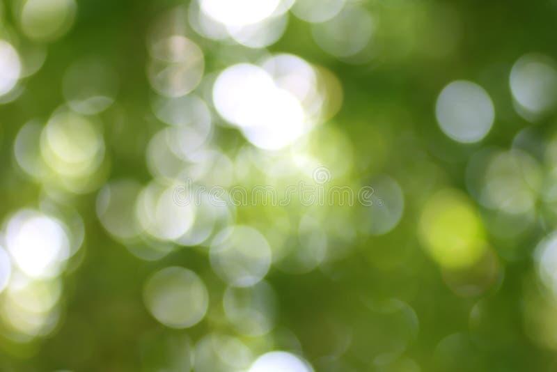 Fond vert naturel abstrait de bokeh photographie stock