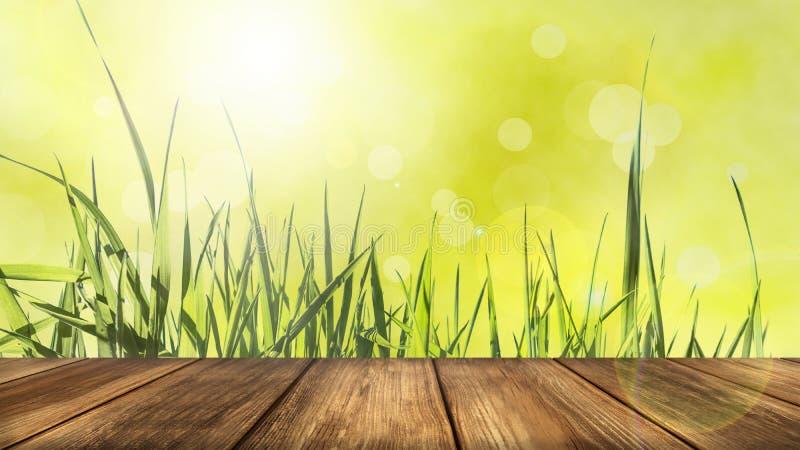 Fond vert rayonnant de ressort avec le Tableau en bois dans le premier plan image stock