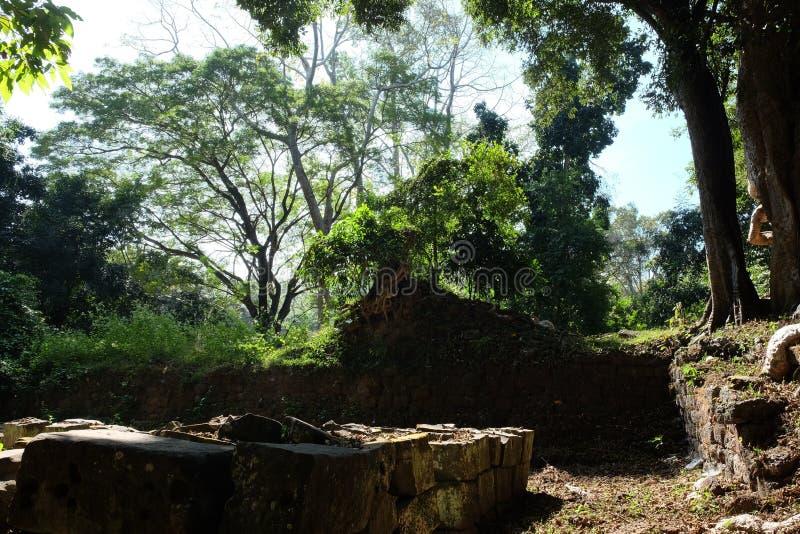 Fondamento di pietra della costruzione distrutta antica nella giungla Giorno soleggiato caldo nella foresta fotografie stock libere da diritti