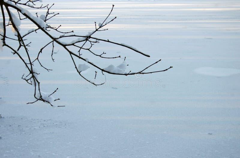 Fondo 2 del invierno imagenes de archivo