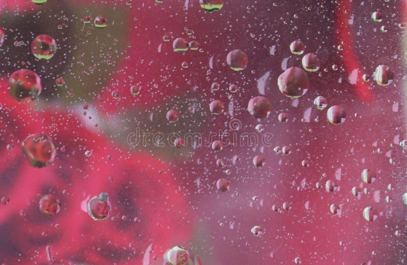 Fondo abstracto coloreado multi macro del aceite y del agua imágenes de archivo libres de regalías