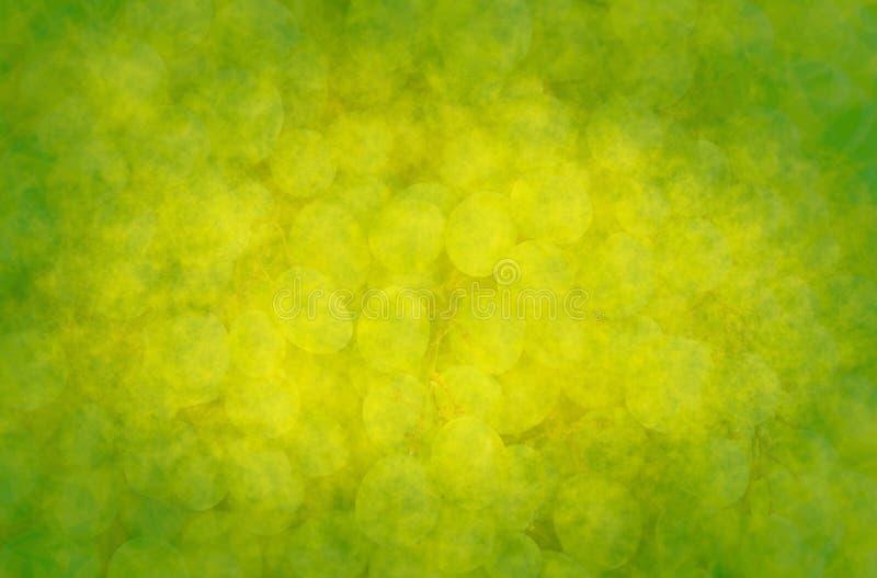 Fondo abstracto con las uvas verdes ilustración del vector