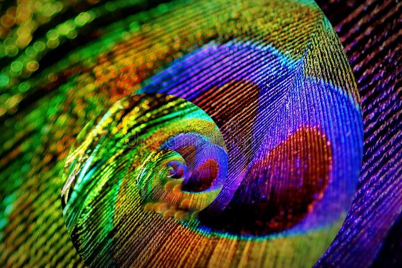 Fondo abstracto con un peacock& x27; pluma de s fotos de archivo