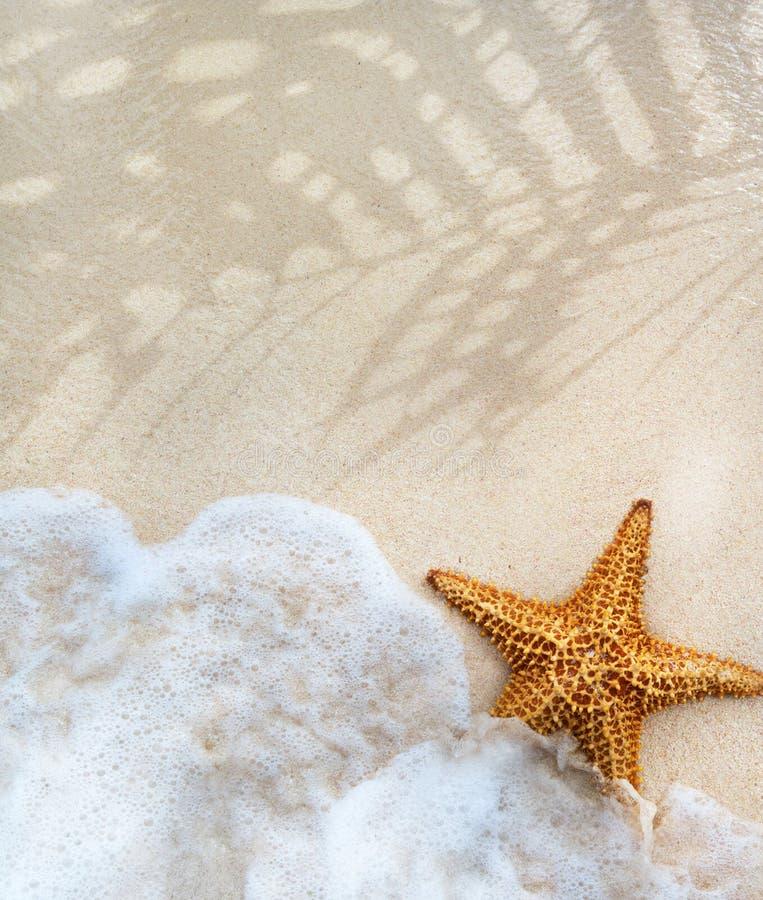 Fondo abstracto de la arena de la playa del verano imágenes de archivo libres de regalías